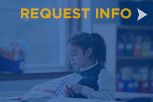 Request Info - Admissions